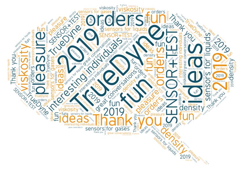 EN_Wortwolke_Danke nach Sensor und Test 2019